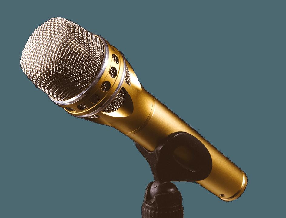 Pro Audio Microphone