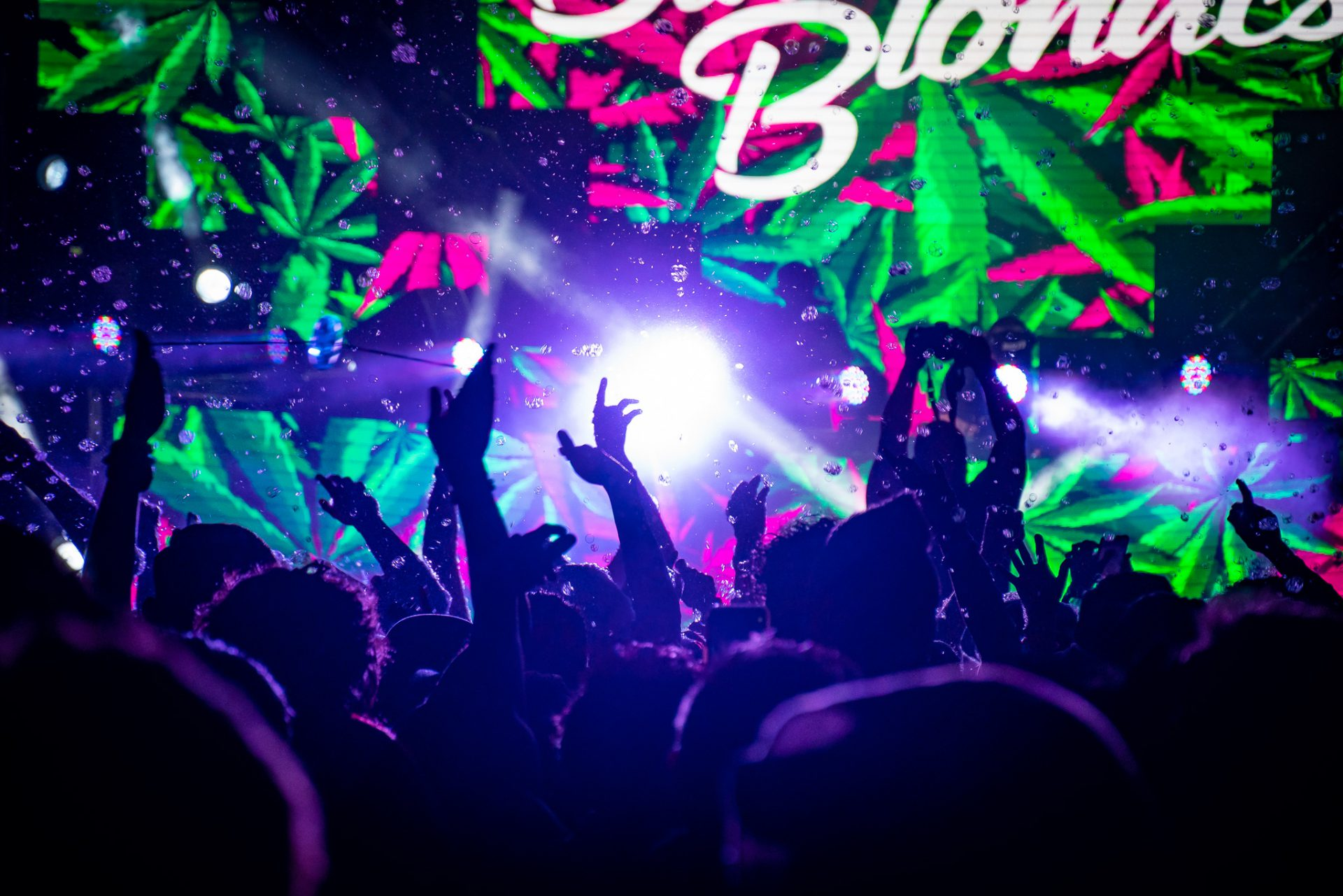 crowd throws their hands in the air at a DJ concert with video wall in background